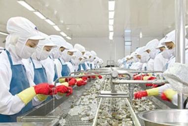 7 cựu cán bộ Tổng cục Thủy sản giả mạo giấy tờ cấp phép thức ăn thủy sản